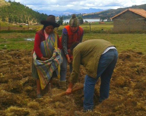 dsc 9938829 oi3k28mfzn76m6i6r5lpo9emwaz1pwk0zw65lv9ehs - Indigenous Community Immersion Peru