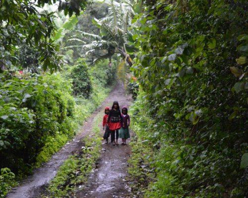 environmental conservation project Tanzania