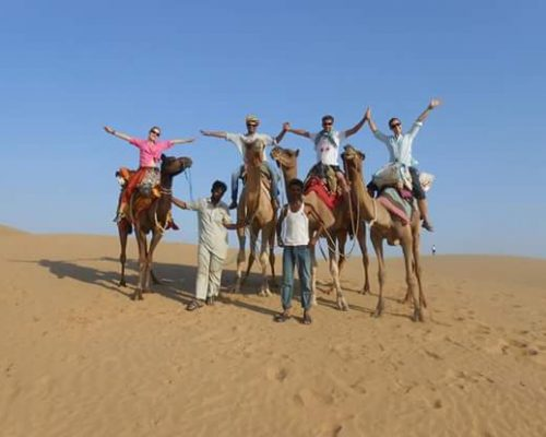 camels in the desert tour