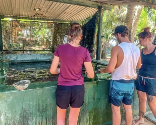 group at turtle centre in Amablangoda