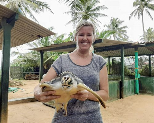 holding a large turtle at the centre