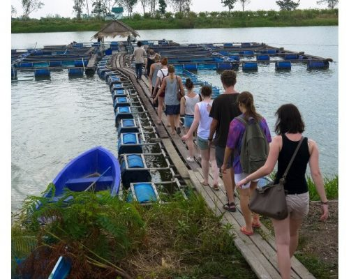 guided tour for volunteer cultural orientation week thailand