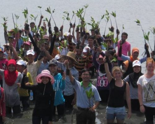 mangrove conservation volunteers after a long day!