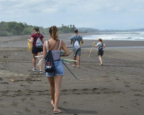 marking the beach