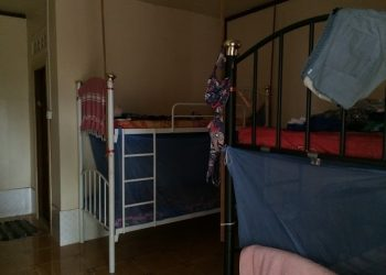 bunk bed dorms in accommodation