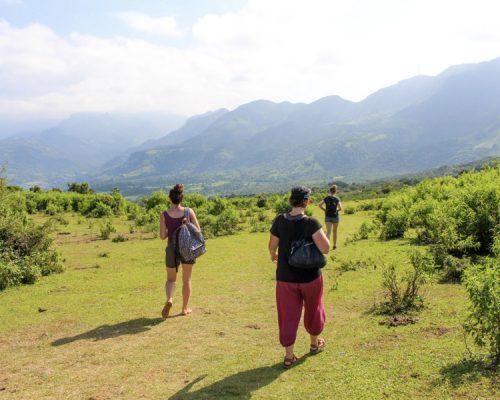 walking through green hills