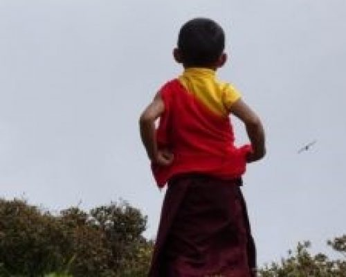 young monk in Nepal